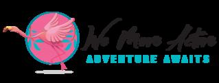 We move active web logo